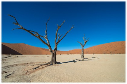 Namibie - země, kam se budete chtít vracet