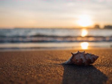 dovolená na pláži