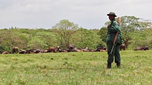 peší safari Arusha