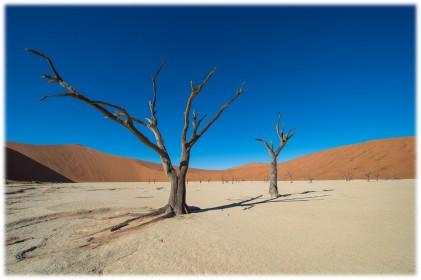 poušť Namib
