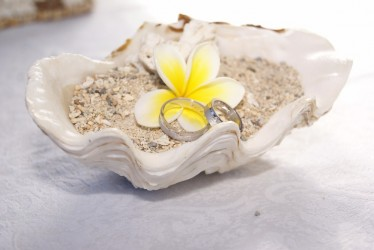 Svatba na míru na Mauriciu včetně zařízení veškerých formalit, hotel Veranda Paul and Virginie