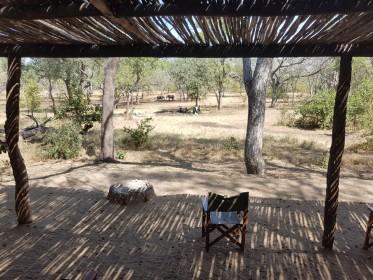 inspekční cesta do Malawi - lodge s napajedlem v Majete Wildlife Reserve