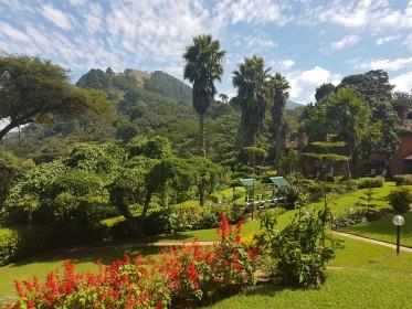 inspekční cesta do Malawi - ubytování v lodge s krásnou zahradou na jihu Malawi
