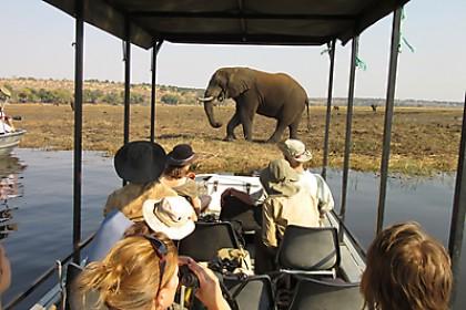 V privátní rezervaci máte více možností aktivit a můžete se dostat ke zvířatům blíž.